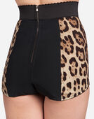 Dolce & Gabbana HIGH-WAISTED PANTIES IN LEOPARD PRINT CADY