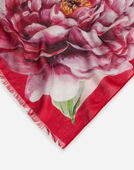 Dolce&Gabbana PRINTED MODAL AND CASHMERE SCARF (135 X 200)