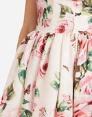 SILK ORGANZA PRINT DRESS